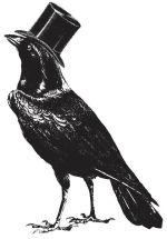 crow top hat